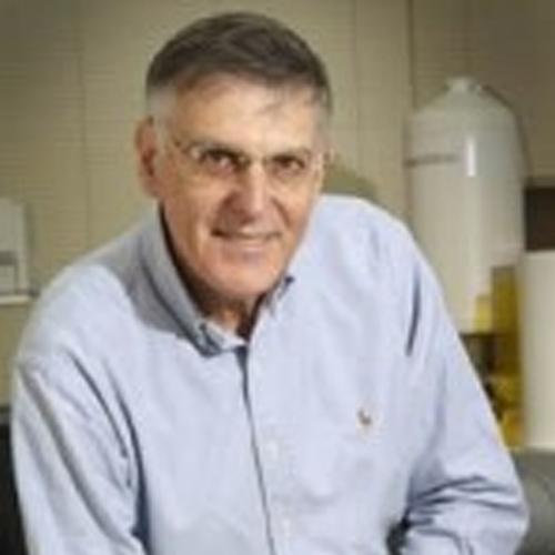 Prof. Emeritus Dan Shechtman