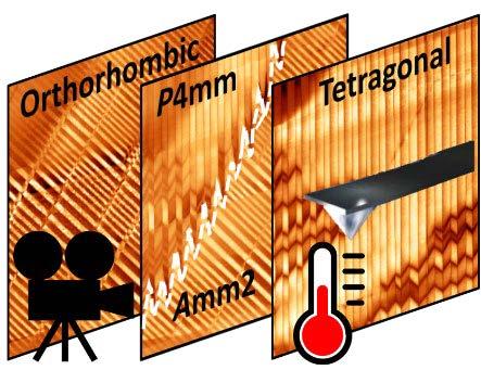 Temperature Dependence of Ferroelectricity SEMINAR IMAGE